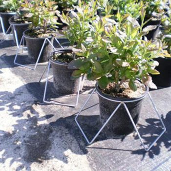 Plant-Stand-8